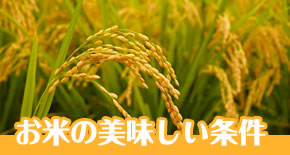 富山のお米の美味しい条件
