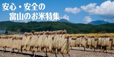 安全・安心の富山のお米